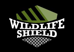 wildlife bat removal etobicoke